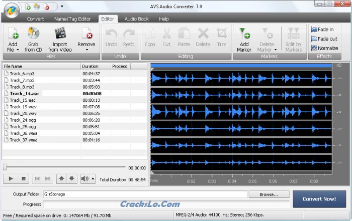 AVS Audio Converter License Key