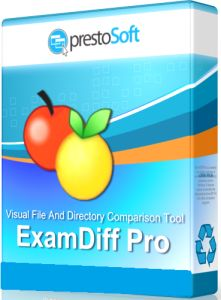 ExamDiff Pro Master Crack